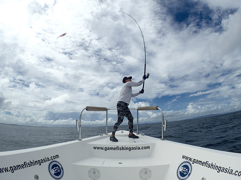 giant-trevally_popping_andaman_casting_hammer-head-rods_lures_shimano-stella-reels